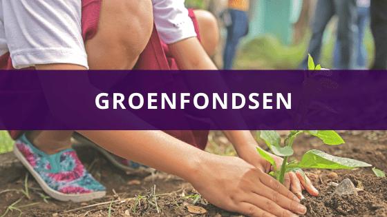 Groenfondsen