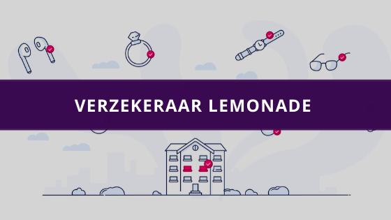 Verzekeraar Lemonade